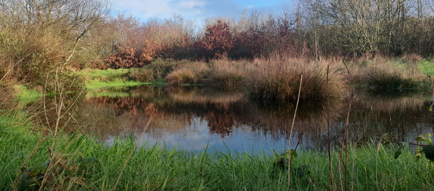 Celebrating Biodiversity: Páirc a'Tobair Ecology Centre